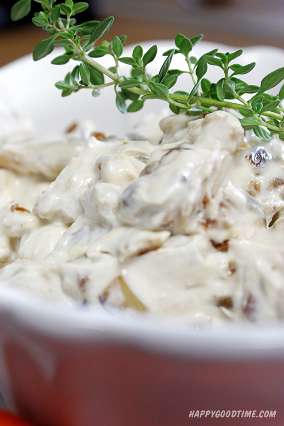 caramelized_onion_dip_8
